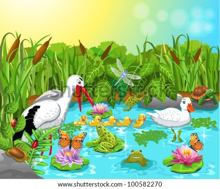wild life in the pond - stock vector