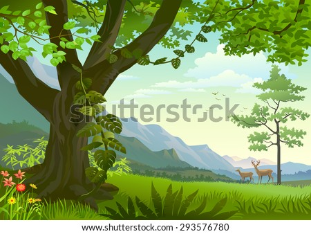 Wildlife in grasslands - stock vector