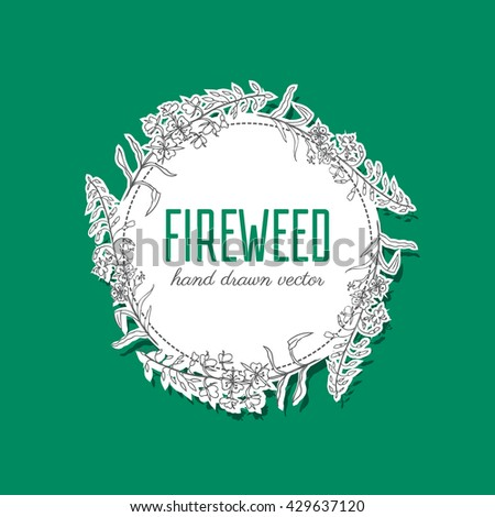 Willow herb, Chamerion angustifolium, fireweed, rosebay, Healing herb hand drawn sketch vector isolated on white, Round frame, wreath with space for text, for card, invitation, packaging tea, cosmetic - stock vector