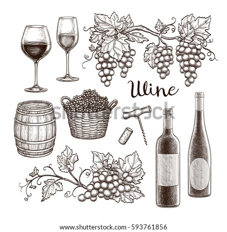 Wine Set Isolated On White Background Hand Drawn Vector Illustration Vintage Style