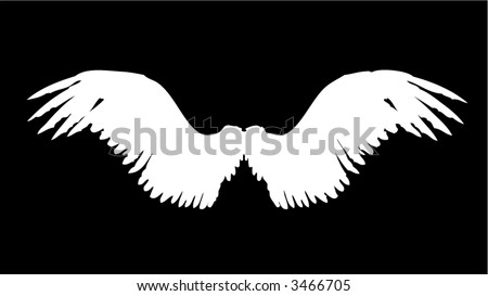 Wing Vector - stock vector