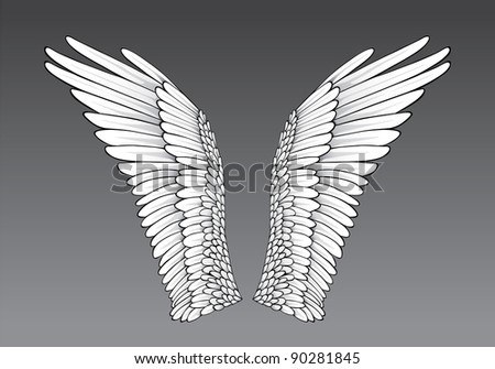 Wings - stock vector