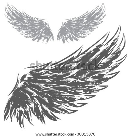 Wings (Hand Drawn Vector Illustration) - stock vector
