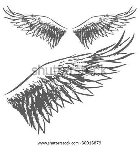 Wings (Hand Drawn Vector Illustration) - stock vector