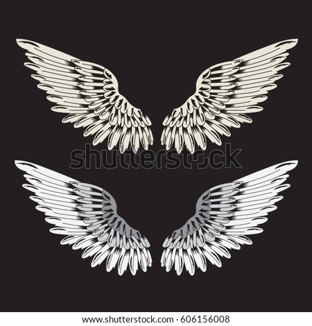 Wings illustration, tee shirt graphics, vectors