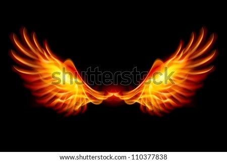 Wings in Flame and Fire. Illustration on black - stock vector