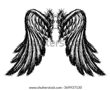 Wings isolated on white background,hand drawing, vector illustration - stock vector