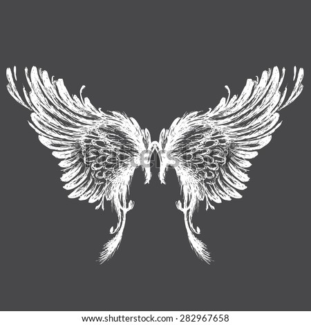 Wings on black background,hand drawing, vector illustration - stock vector