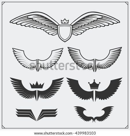 Wings set. Design elements. Vector illustration.