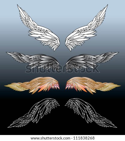 Wings - vector drawing - stock vector