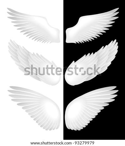 Wings. Vector illustration - stock vector