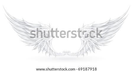 Wings White, eps10 - stock vector