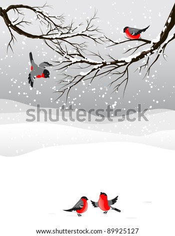Winter background with birds bullfinch with space for text - stock vector