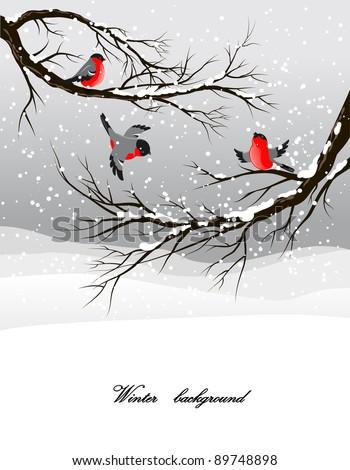 Winter background with bullfinch - stock vector