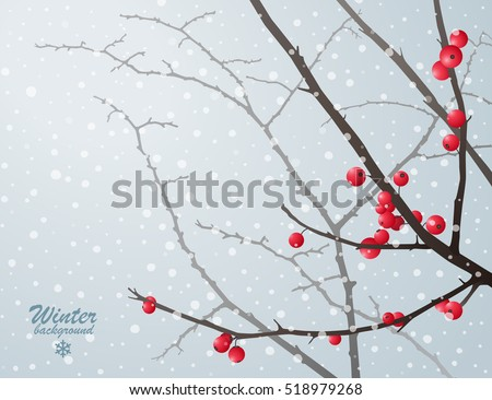 Winter bare branches with red berries against grey sky in snowfall
