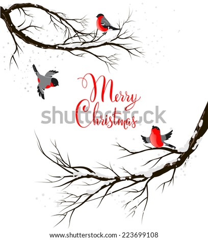 Winter birds on branches. Seasonal background with copy space. - stock vector