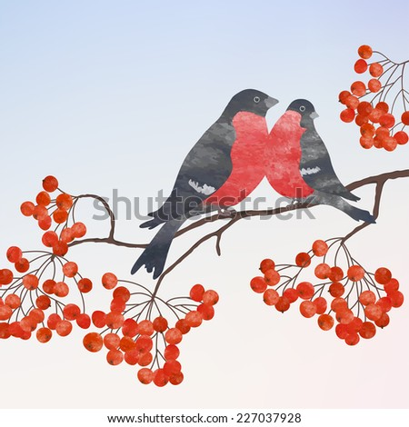 Winter card  with two bullfinches on a branch of rowan, watercolor  vector illustration  - stock vector