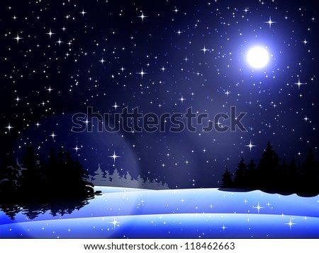 winter landscape at night