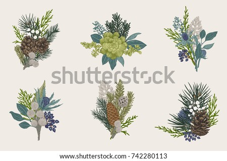 Winter set. Floral christmas bouquets. Evergreen, cone, succulents, flowers, leaves, berries. Botanical vector vintage illustration. Colorful