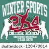 winter sports - stock photo