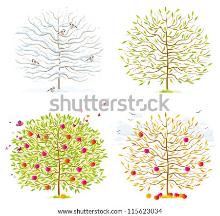Winter, spring, summer, autumn trees with leaves, birds and clouds - stock vector