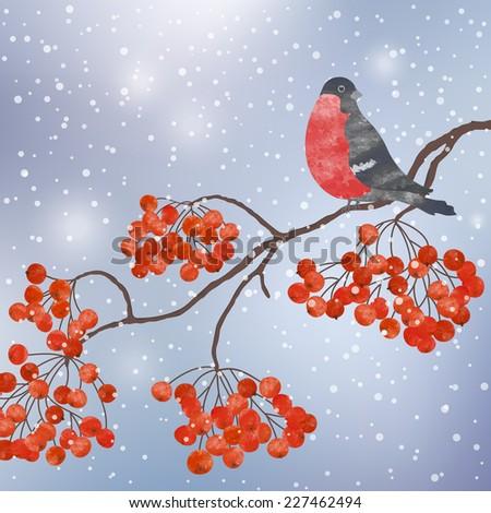 Winter vector card  with bullfinch on a branch of rowan - stock vector