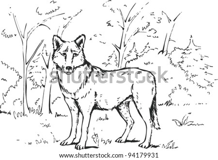 wolf - stock vector