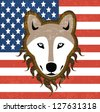 wolf dog illustration in front of  flag  United States Of America in vector - stock vector