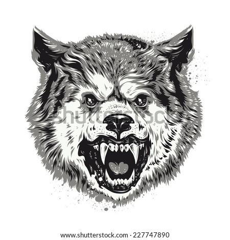 Wolf head grunge vector art.  - stock vector