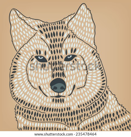 wolf or husky closeup - stock vector