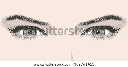 woman eyes eyebrow vector illustration beauty portrait