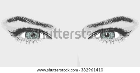 woman eyes eyebrow vector illustration monochrome beauty portrait