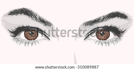 woman eyes lashes eyebrows vector illustration