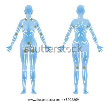 Womans Body Front Back Lymphatic Massage Stock Vector Hd Royalty
