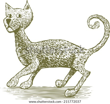 Woodcut-style illustration of a spooked cat.