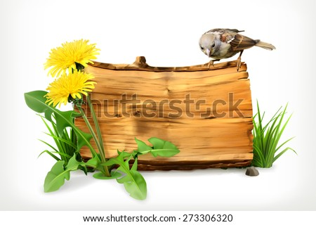 Wooden banner, dandelion and green grass, vector illustration - stock vector