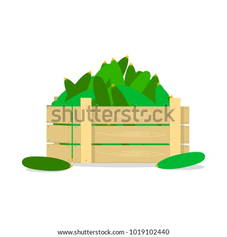 Wooden box with cucumbers, flat design object.