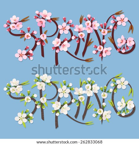 Word Spring written with cherry sprigs bloomed on azure background - stock vector