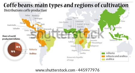 World map coffee beans main types vectores en stock 445977976 world map coffee beans main types of coffee beans gumiabroncs Images