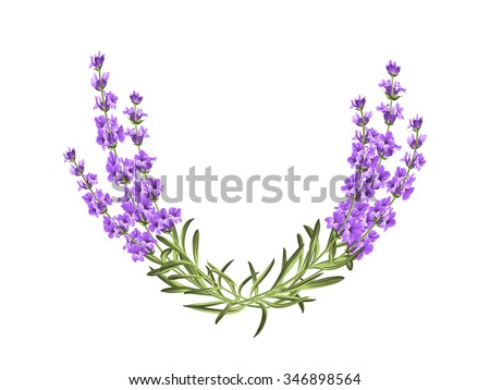 Wreath, provence, frame, ,floral, perfume. Bunch of lavender. Vector illustration.