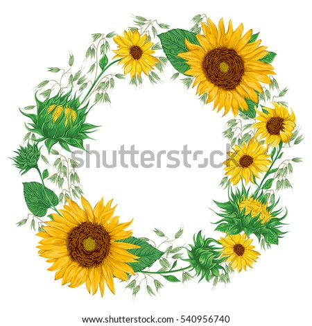 Wreath With Sunflowers And Oat Rustic Floral Background Vintage Vector Botanical Illustration In Watercolor