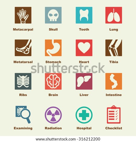 x-ray elements, vector infographic icons - stock vector