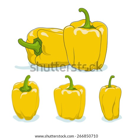 Yellow bell pepper,three kinds of sweet pepper, capsicum on a white background,vector illustration - stock vector