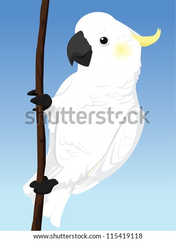 Yellow Crested Cockatoo - stock vector