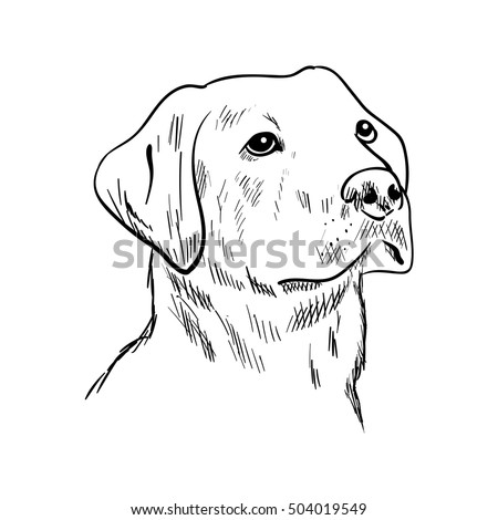 Black lab tongue out coloring pages for Black lab coloring pages