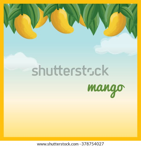 Yellow Mango Hanging On Tree