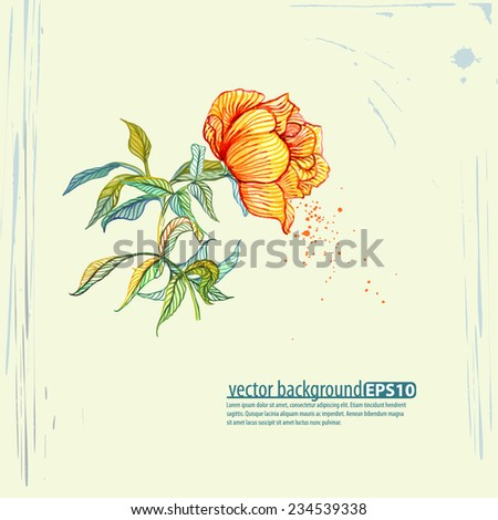 Yellow rose on grunge background. Vector object. - stock vector