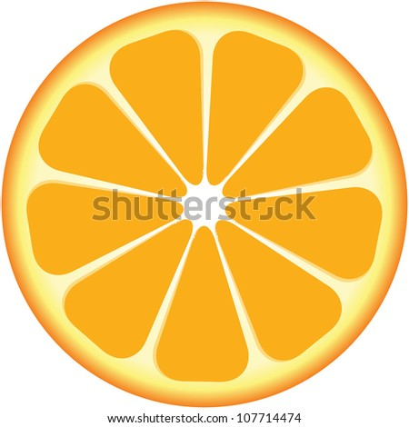 yellow round segment of a lemon - stock vector