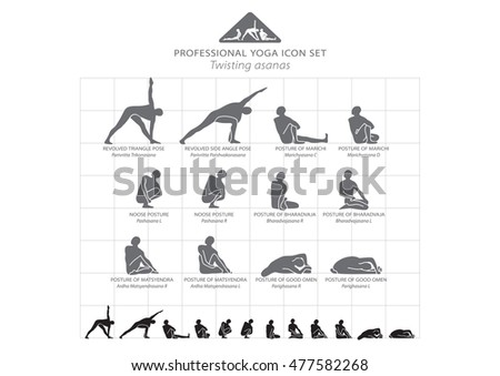 Yoga professional icon set 1