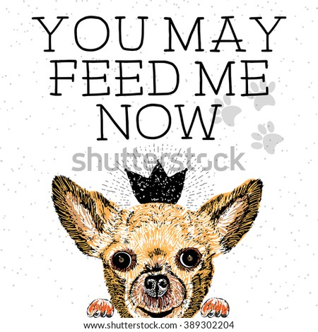 You may feed me now. Sign with cute smiling but hungry dog. Motivational lettering on texture background. Inscriptions for dog lovers. Inspirational typographic calligraphy. Demanding phrase. - stock vector